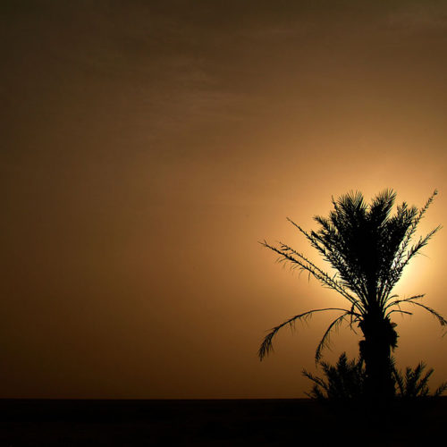 Túnez 09